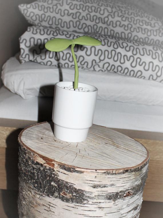 miramoln.se -stubbe och växt